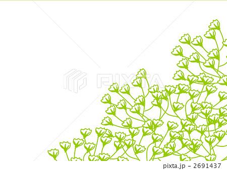 かすみ草 花 カスミソウ イラストのイラスト素材 Pixta