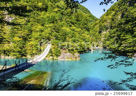 夢の吊り橋の全景