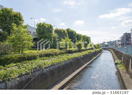 多摩運河の写真素材 - PIXTA