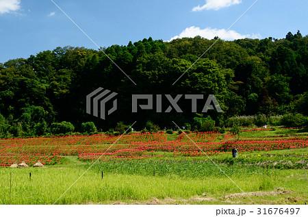 久留里藩の写真素材 - PIXTA