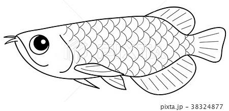 ぬりえ 魚 熱帯魚 キャラクターのイラスト素材 Pixta