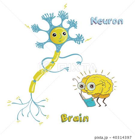 シナプス ブレイン 脳 脳みそのイラスト素材 Pixta