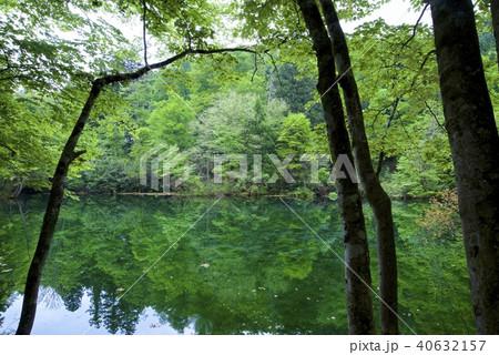 中魚沼郡の写真素材 - PIXTA